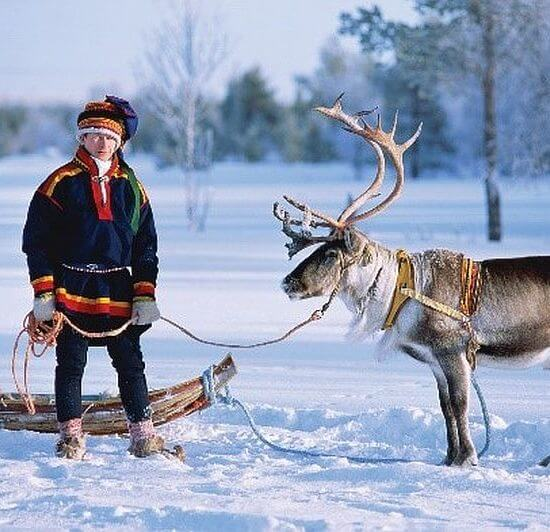 Lapland Soft Winter Adventure